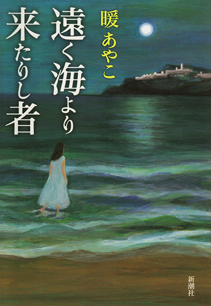 "Illustration for the Book Cover ""Someone Who Came From the Faraway Sea"" by Ayako Dan"